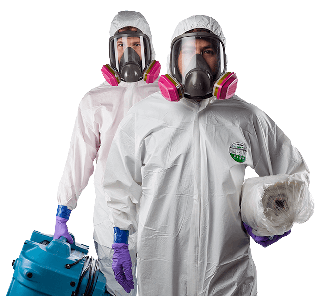 mould-removal-workers-2-1